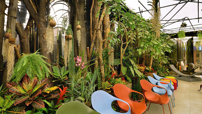 Greenhouse at CHA Fertility Center